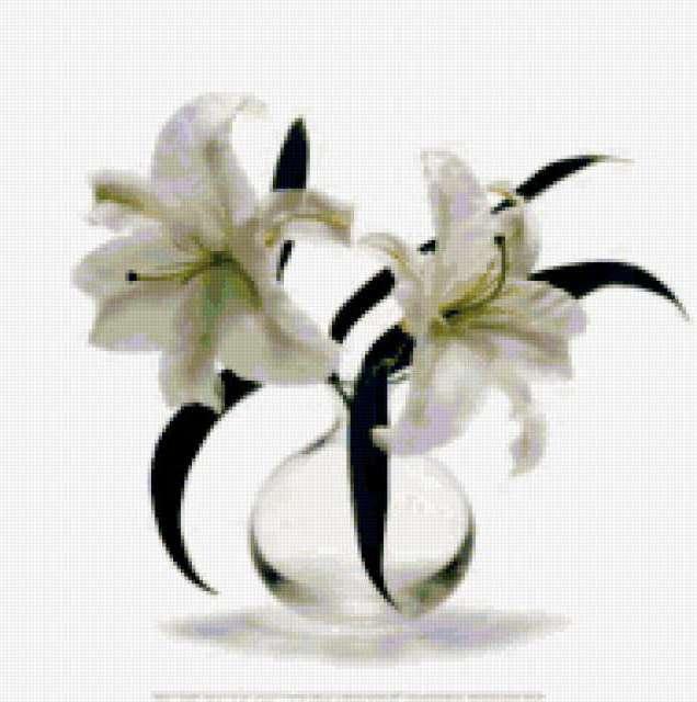 Белые лилии на белом,