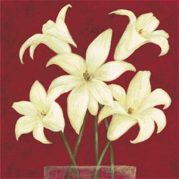 Белые цветы на красном,