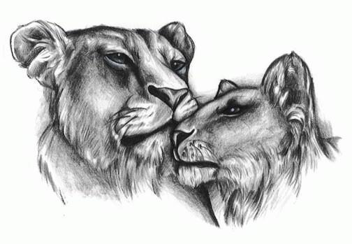 Львы, животные, черно-белое,