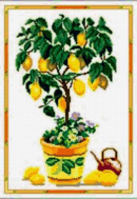 Лимонное дерево, предпросмотр