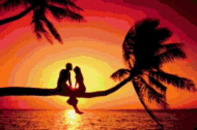 Любовь на пальме, пейзаж,
