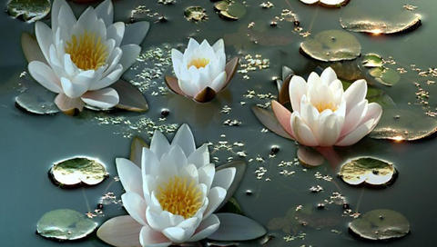 Water Lilies, �����