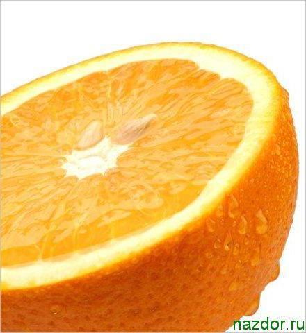 Апельсин, оригинал