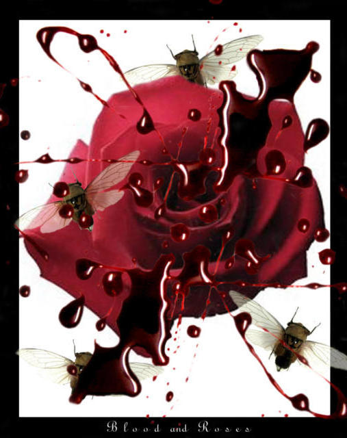 Blood and Rose, ����, �����