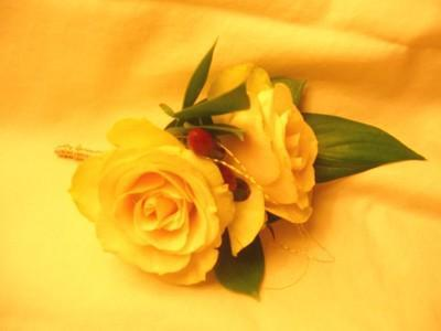 Two Yellow Roses, �����