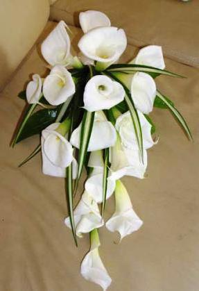 Wedding Calla Bouquet, цветы