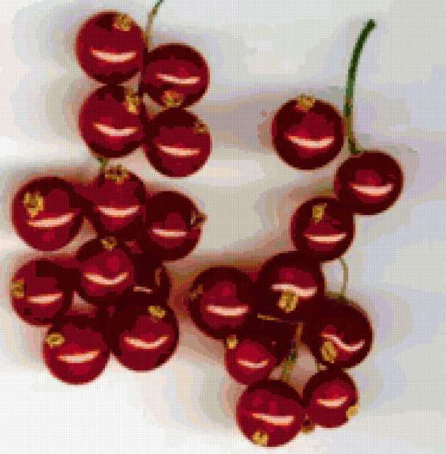 Грозди красной смородины