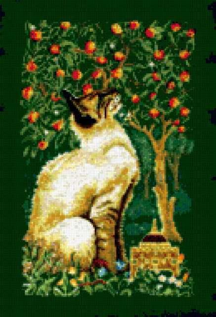 К схеме вышивки «Сиамский кот»