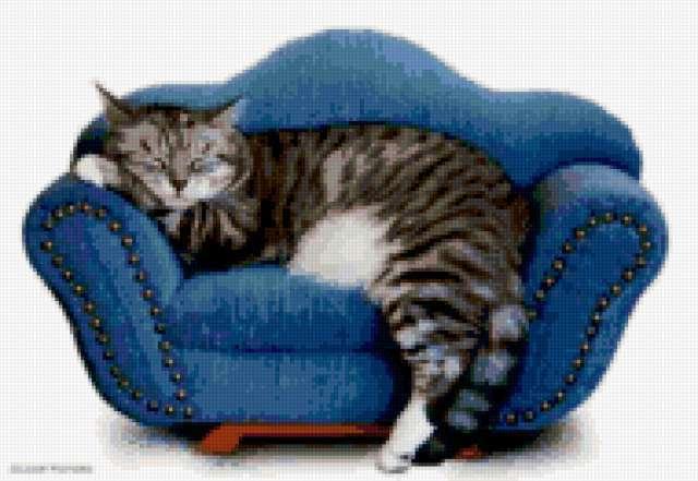 Кошка на диване, предпросмотр