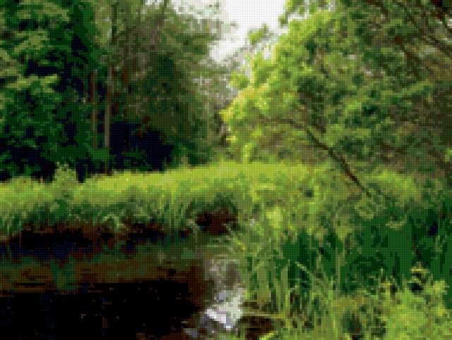 В тишине леса..., предпросмотр