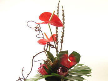 Exotic Flowers Bouquet, цветы