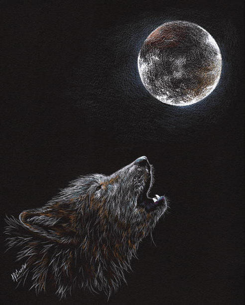 Wolf and Moon (Pencil Drawing), животны