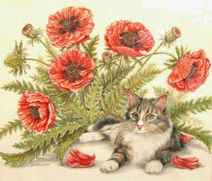 Poppies and Kitty, цветы, животны