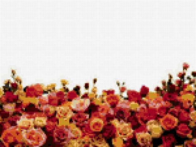 Цветочный бордюр, предпросмотр