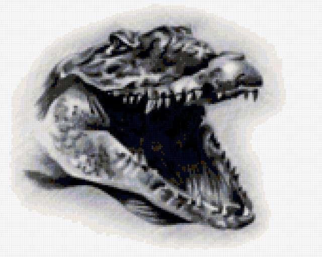 крокодил, зубы, морда,