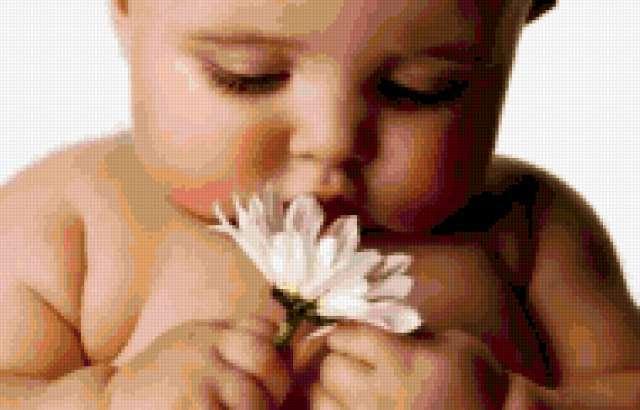 Малыш с ромашкой, дети, цветы,