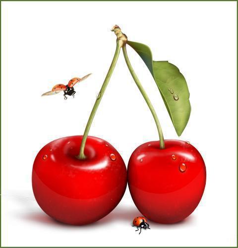 Вишенки, вишенки, фрукты