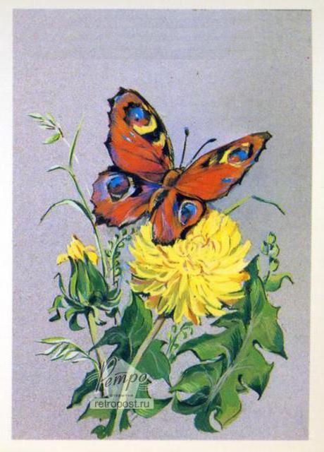 Бабочка на одуванчике, цветы,