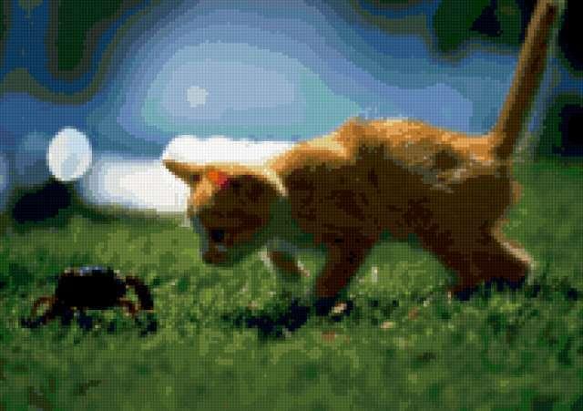 Котенок и жук, предпросмотр