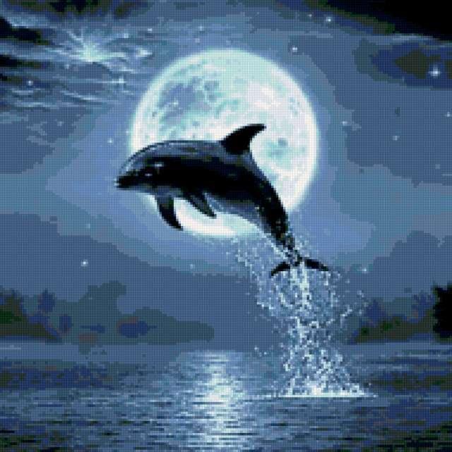 Прыжок дельфина, дельфин