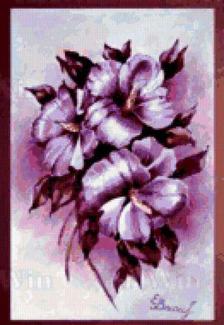 Сиреневые цветы, графика