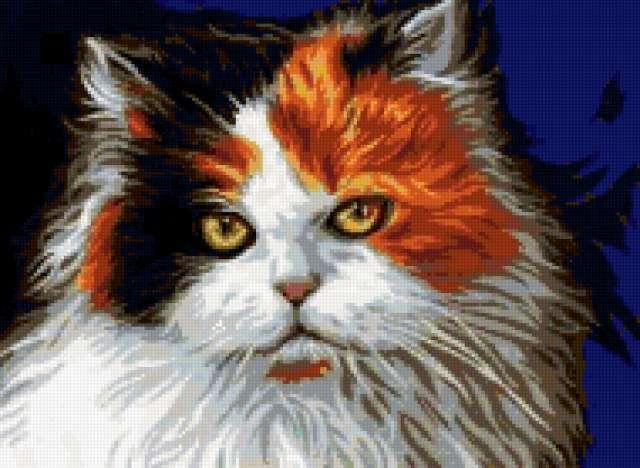 Трехцветный кот, животные