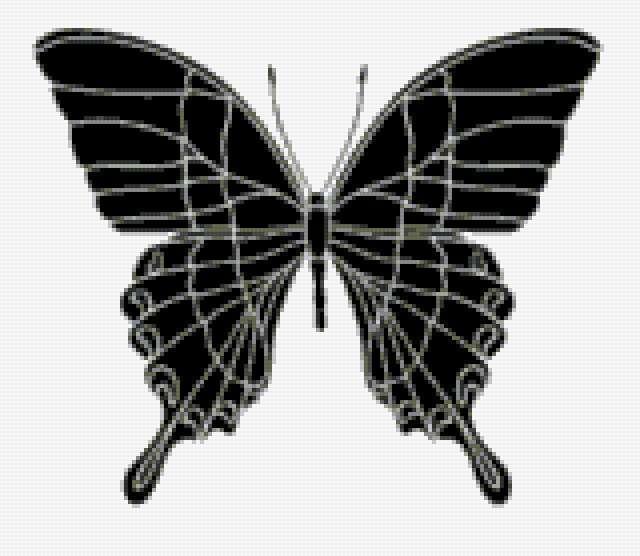 Черная бабочка, предпросмотр