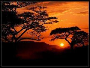 Africa Sunset, африка