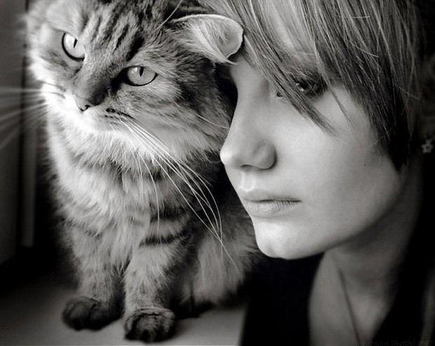 Девушка с кошкой, оригинал