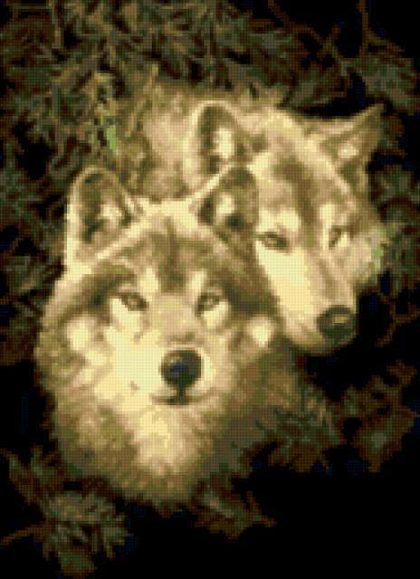 Волки.Пара., предпросмотр