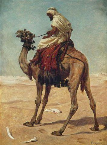 Arab and His Camel, ���������