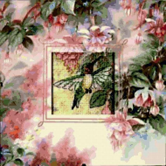 Колибри и фуксия, колибри