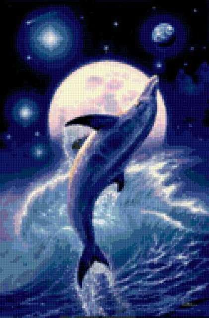 Дельфин на фоне луны,
