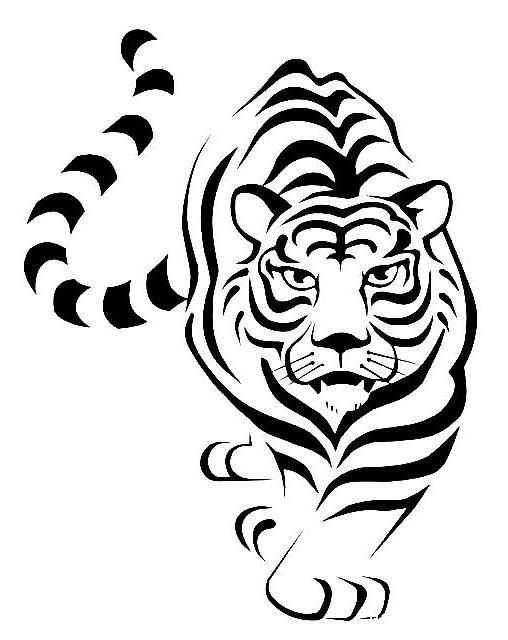Большая кошка, тигр
