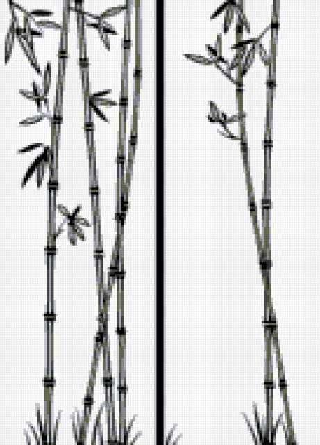 Бамбук, предпросмотр