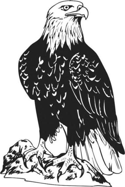 Схема вышивки орел монохром
