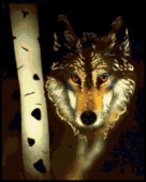 Волк 3, волк, картинка, морда,