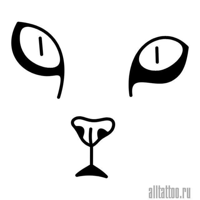 Лицо кошки, кошка, чёрно-белый