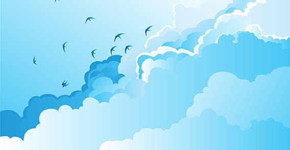 Sky clouds birds,
