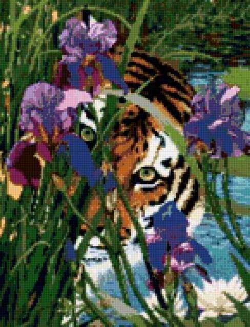 Тигр в траве, предпросмотр