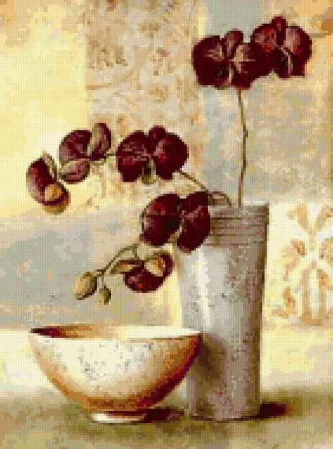 Орхидеи, предпросмотр
