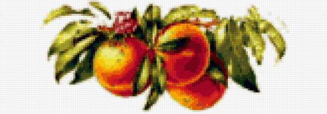 Персики на ветке, предпросмотр