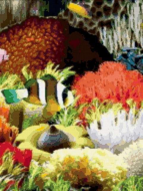 Аквариум, аквариум, рыбки