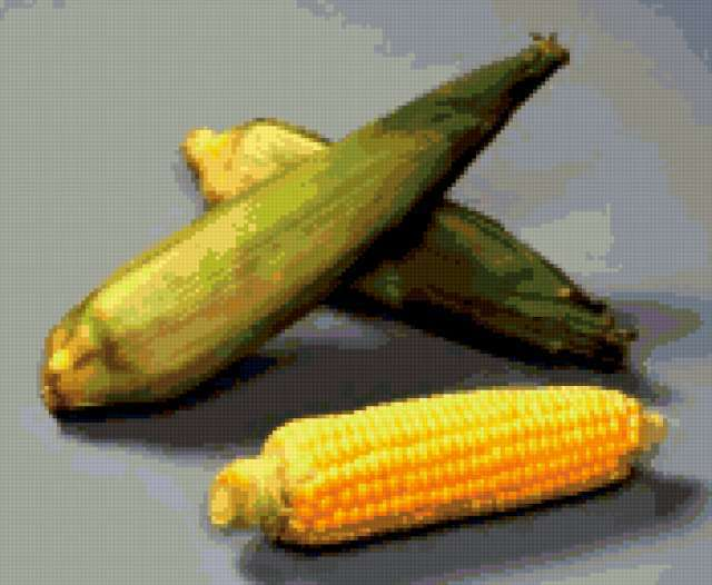 Схема вышивки кукурузы