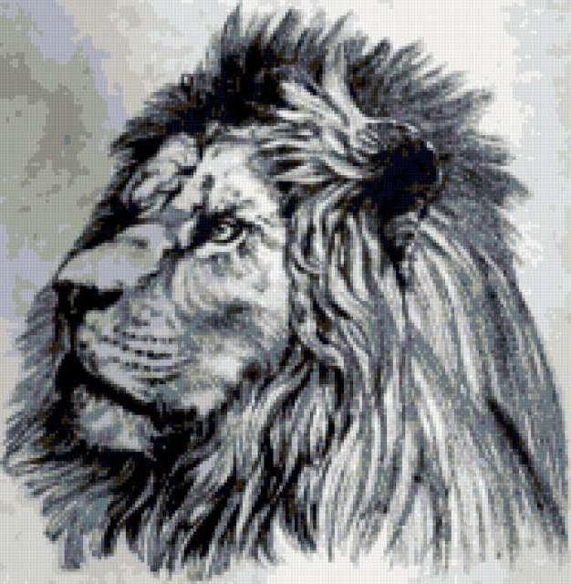 Лев, графика, черно-белое,