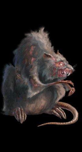 Крыса, крыса