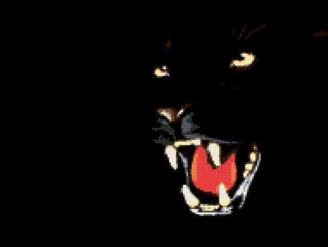 Черная пантера, картинка