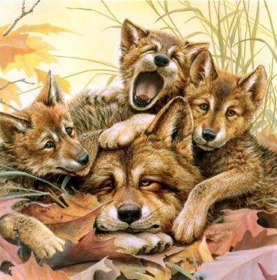 Волк и волчата, оригинал