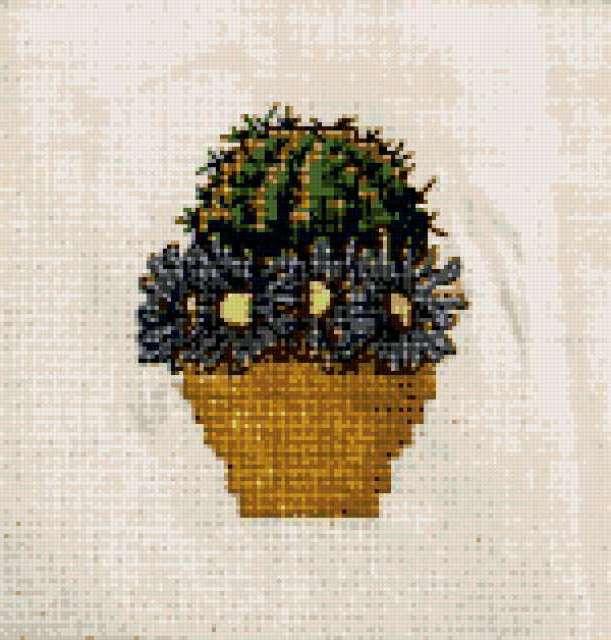 Серия кактусы, предпросмотр