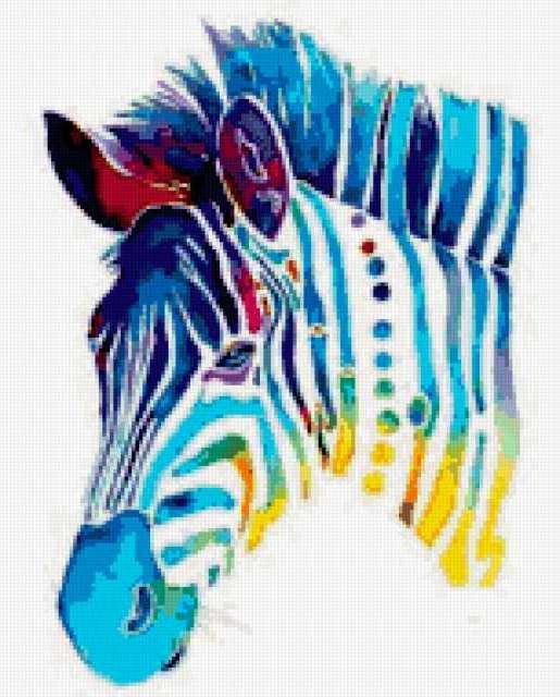 Радужная зебра, предпросмотр